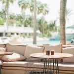 Poolside @ Surfcomber