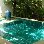 Own plunge pool and private garden