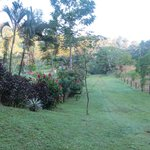 Our backyard at La Casito del Rio