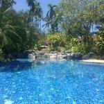 het algemene zwembad