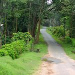 Entrance to Nagarhole Wildlife Sanctuary