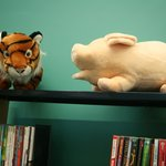 Tiger and pig, discussing literature
