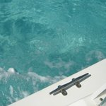Beautiful clear water off the boat