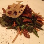 Crispy Duck salad special