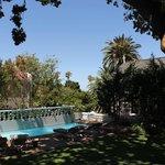 Garten mit Swimminpool
