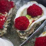 Japanoise Oysters