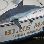Blue Max Sportfishing