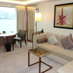 Living (Premier Harbour View Suite)