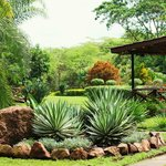 The beautifully landscaped grounds at the lodge