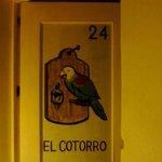 EL COTORRO