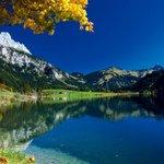 Traum Herbst