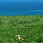 Air picture Forest Dream resort, Diani beach