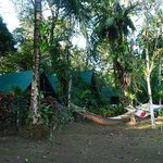 Corcovado Adventures Camp tents and hammocks