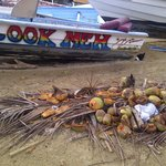 Coconuts and Boats at Stonehaven