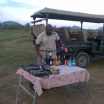 safari picnic