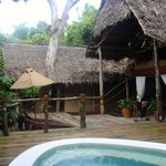 Jungle Suite with plunge pool, relaxation area, and bedroom