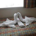 Towels were so cute!