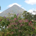 Arenal from the hotel grounds