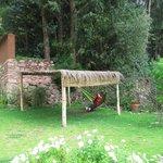 HAMACA PARAGUAYA EN EL JARDIN