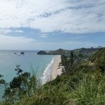 Hahei Beach - from track to Cathedral Cove