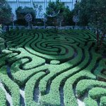 Maze (kids would love to get lost in this)