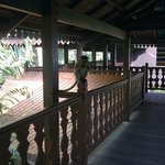 the resort is located in a forest, so guests can see many cute monkeys when th