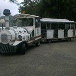Train from the main area to Pantai beach