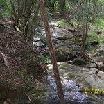 Bubbling creek next to Lodge