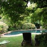Blick vom Garten a.d.Pool