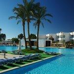 oasi in piscina