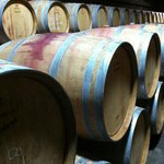 in the Cellars of the Antinori Winery