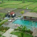 Grande piscine
