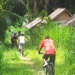 heading through the jungle