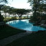 Serengeti serena pool