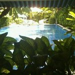 Blick auf den Pool im k-Hotel
