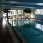 Schwimmbad mit Blick zum Garten