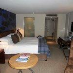 room - 310