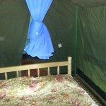 Room/Tent