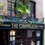 Chameleon frontage