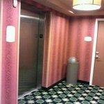 Nice elevators