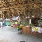 Bar Samana