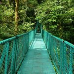 Canopy Walk in Monteverde