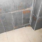 bathroom tiles, horrible looking