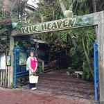 Blue Heaven Outdoor Restaurant - Wonderful!!