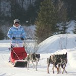 The dog sled trip!