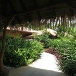 The enterance to the Palm Villa