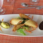 Crispy Vegetable Samosas and Spring Roll