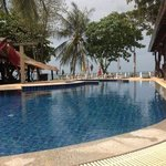 New Coconut Resort at the pool