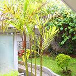 Photo de De Riau Motel / Pavilion