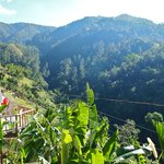 The view at Mount Edge Guest House in the Blue Mountains, Jamaica.
